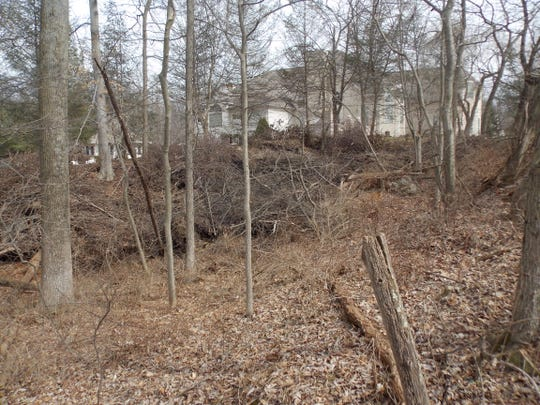 Location of the Price iron mine near a residence off of Old York Road in Carroll Township.