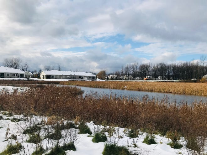 The town of Webster announced in November that it had acquired 84 acres of open, natural land adjacent to the Arbor Creek development, on the town's southeast side.