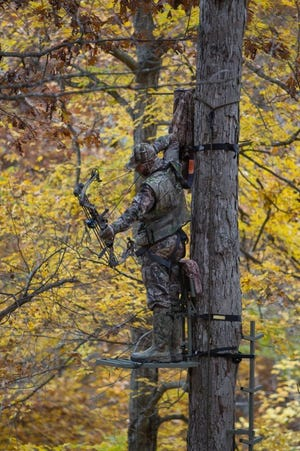 Missouri's archery deer hunting season begins Sunday.