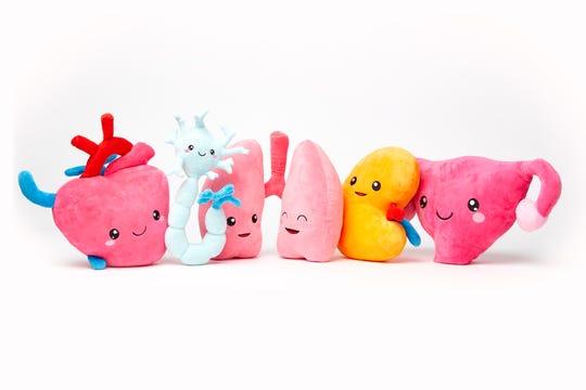 An array of Nerdbugs: heart, neuron, lungs, kidney, uterus.