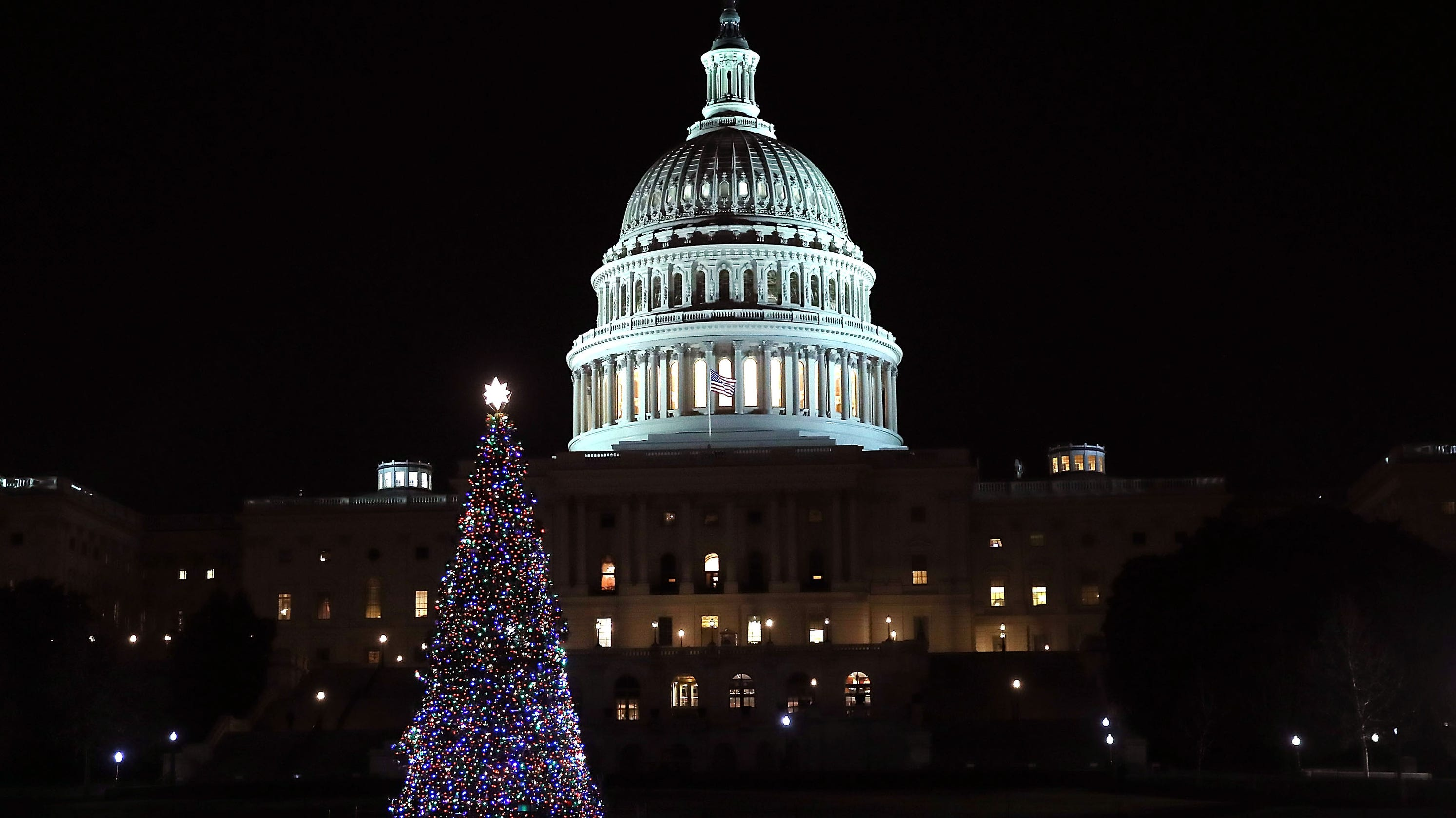 Capitol Christmas Tree.Christmas Tree Arrives At The U S Capitol Live Stream