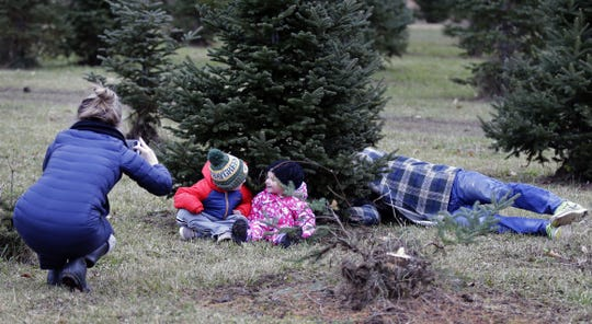 Kirsten Van Asten tries to record a family moment with her children, Jack and Ivy, but Jack is more interested in watching his father, Brandon, cut the tree down Sunday at the Mosquito Hill Tree Farm in New London.
