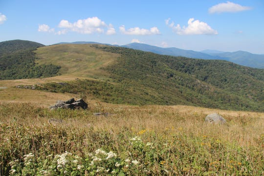 the Southern Appalachian Highlands Conservancy transferred 324 acres ON Hump Mountain in the Highlands of Roan to the Cherokee National Forest. The property is just 500 feet from the Appalachian Trail.