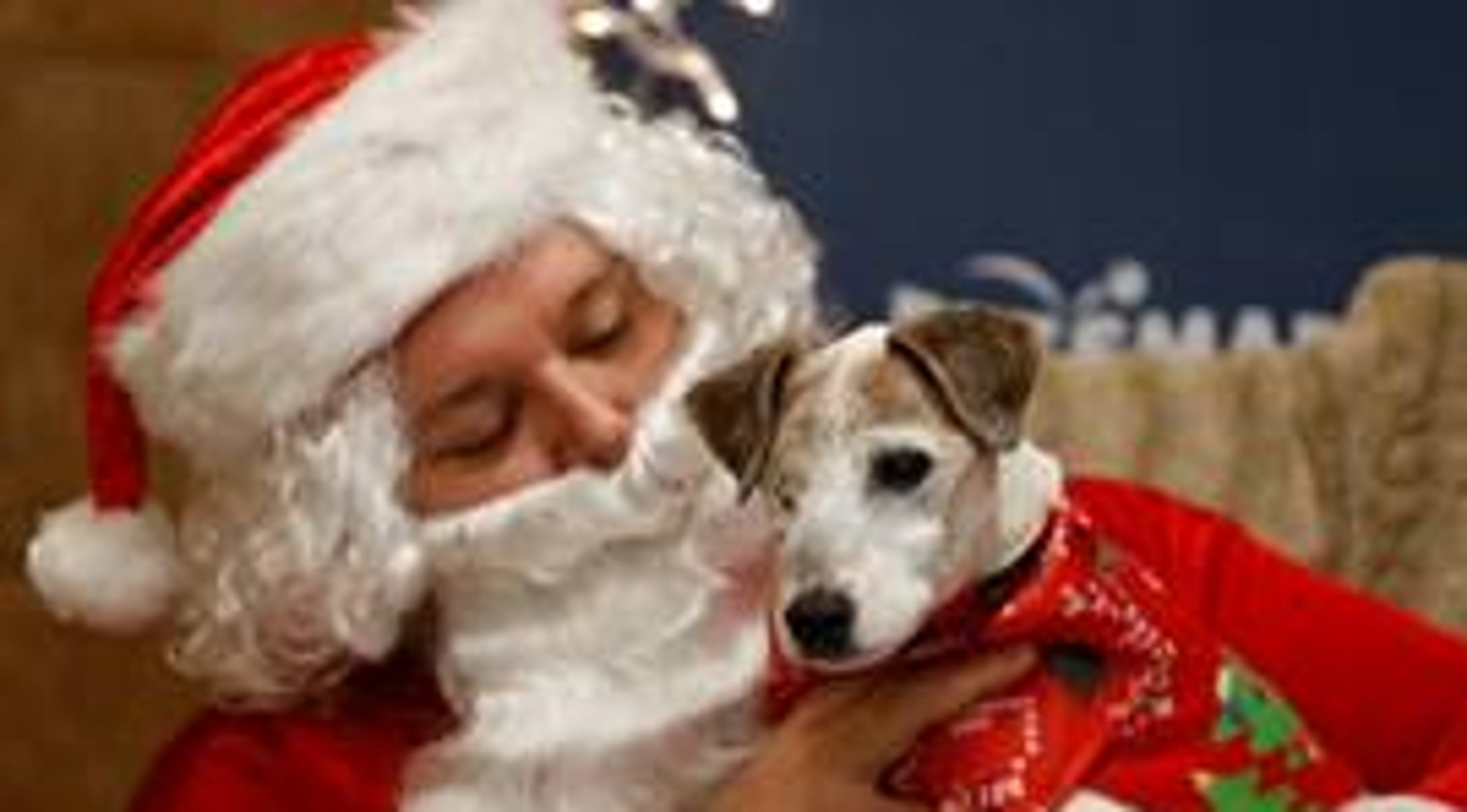 Petsmart Christmas Eve Hours.Central Jersey Daily Rundown Friday Dec 7