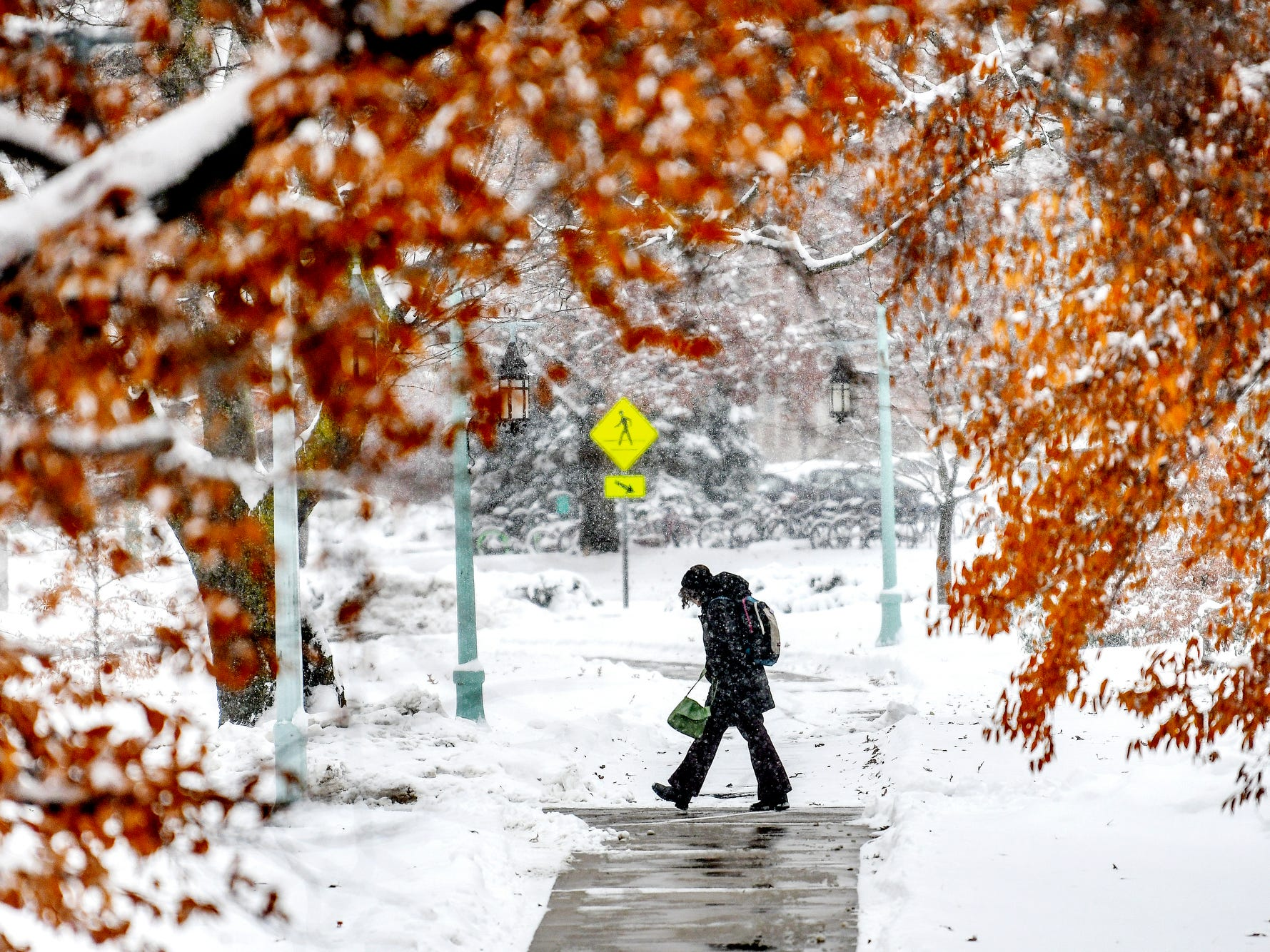 A pedestrian walks along a path near trees still showing signs of fall on Monday, Nov. 26, 2018, on the Michigan State University campus in East Lansing, Mich.