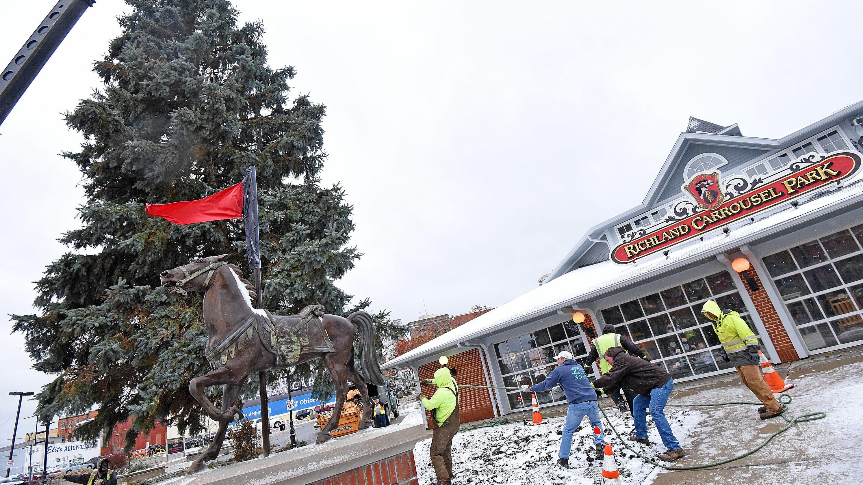 Sherman Avenue resident donates Richland Carrousel Park Christmas tree