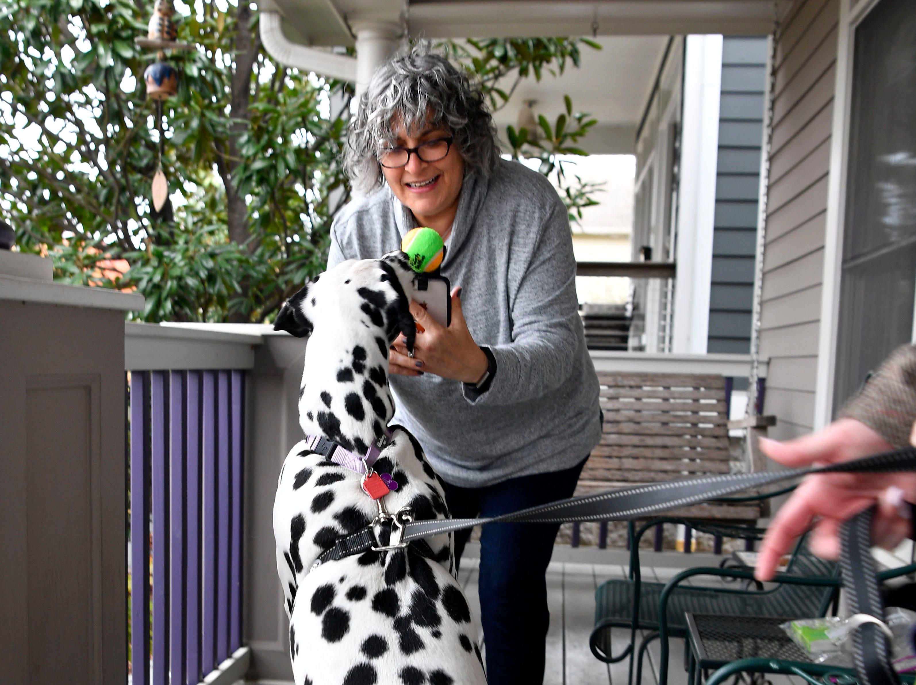 "Sheila Cope, who runs the popular Instagram account ""Germantown Dogs,"" takes an action photo of ""Dottie"".