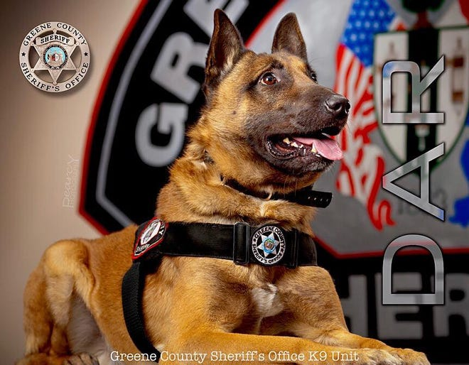 Dar was born Oct. 13, 2007in the Czech Republic. He began his law enforcement training in January 2009 with the Greene County Sheriffs Office. He died of cancer.