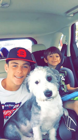 AJ and Logan Wydra with Uno in the car on the way to Thanksgiving dinner at their grandparents' house