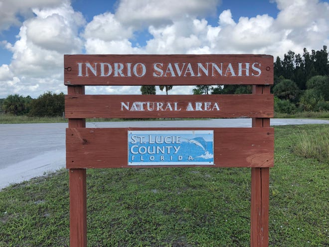 Unwrap the gift of nature this December as St. Lucie County's Environmental Resources continue its winter guided hikes. These free, guided hikes allow residents and tourists to explore the county's more than 10,000 acres of preserves.