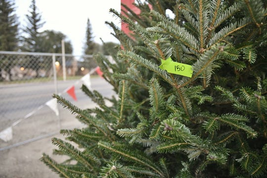 The cost of trees has increased this year, following a nationwide shortage.
