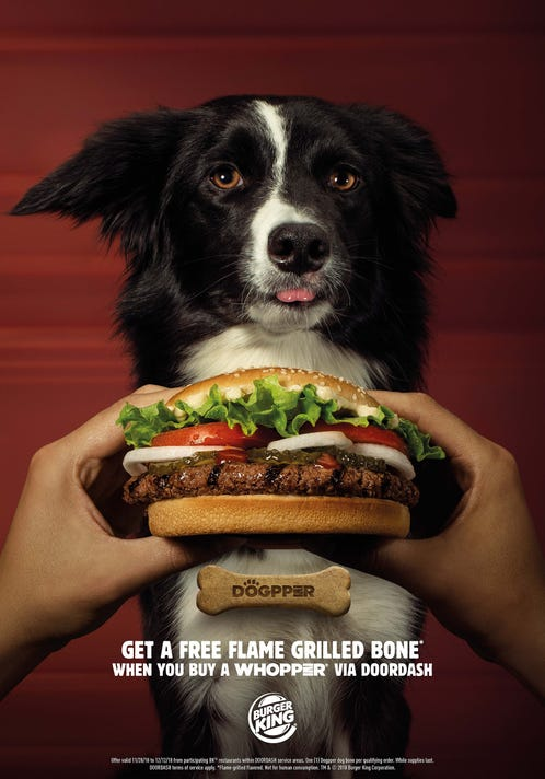 Burger King Dog