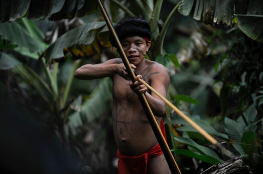 A Yanomami native man mans his bow and arrow at the Irotatheri community, Amazonas state, southern Venezuela, 19 km away from the border with Brazil, on September 7, 2012.