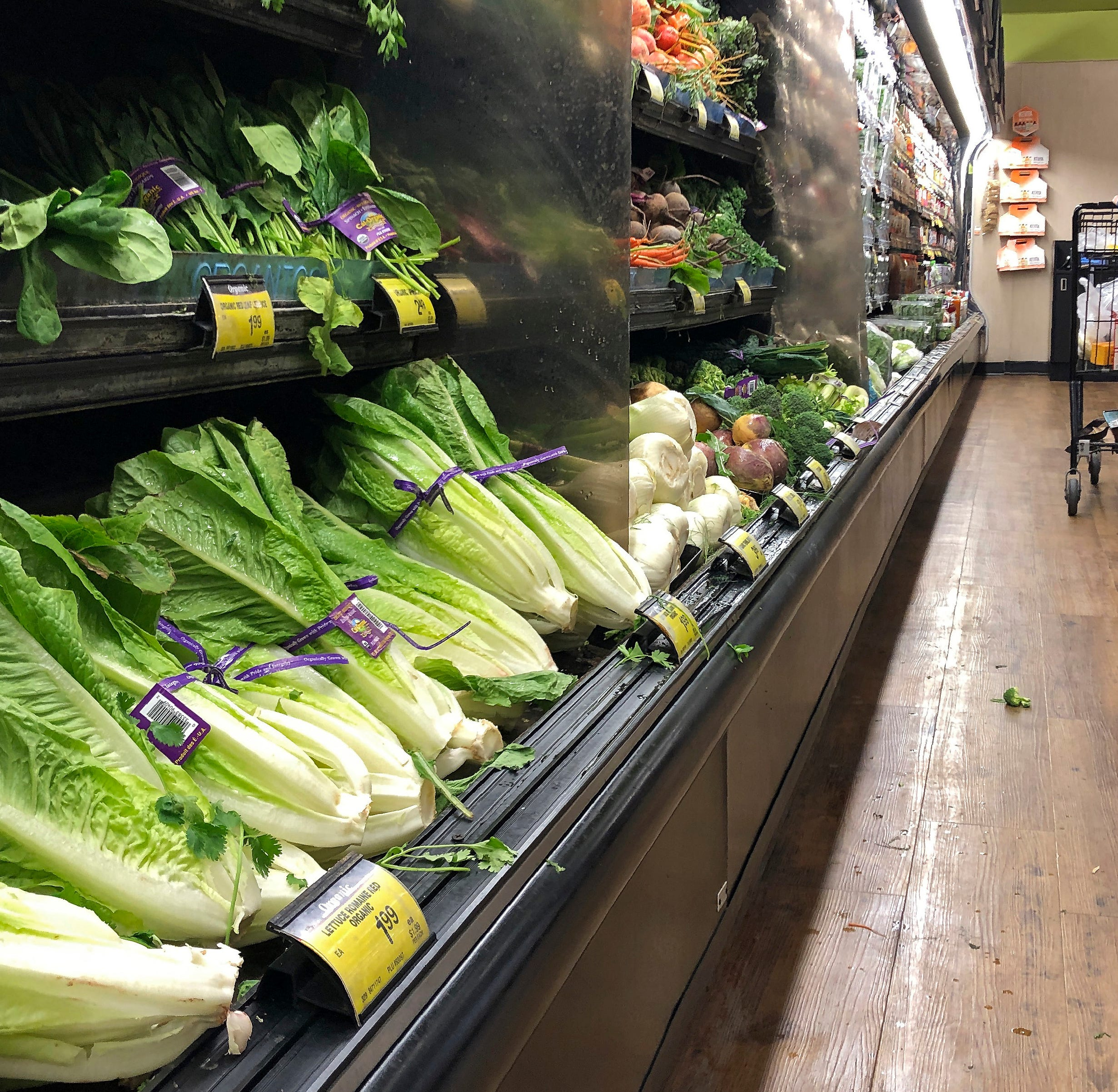 Romaine roulette exposes farm-to-fork flaws