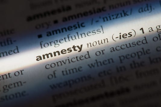 Amnesty Word In A Dictionary Amnesty Concept