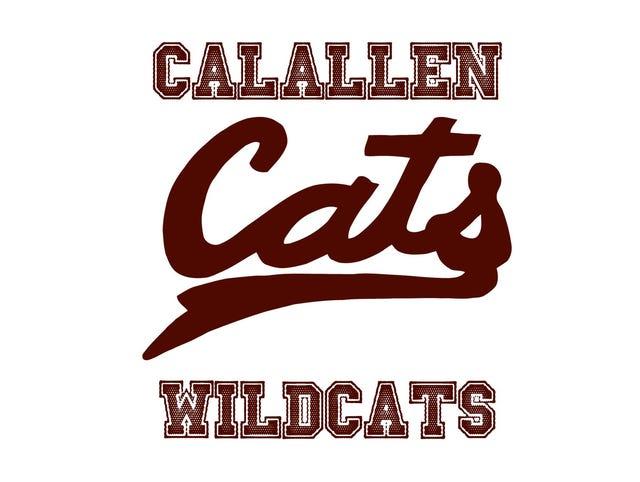 Image result for calallen wildcats