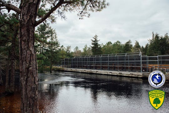 Water rises to Evans Bridge on the Wading River in Wharton State Forest after recent rainfall.