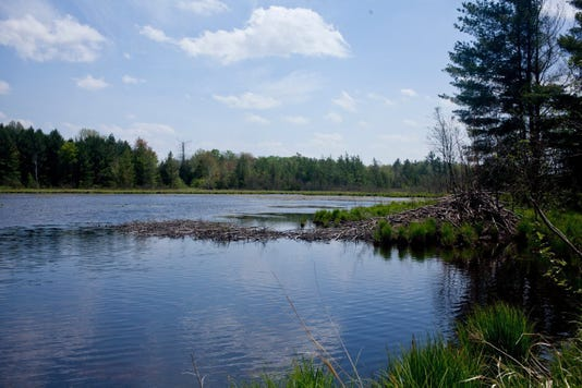 Bc Mi Michigan Mining Water