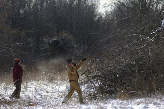 "In February 2018, volunteers completed habitat work at the Gratiot-Saginaw State Game Area, restoring a wildlife opening by cutting timber and shrubs and building brush piles for ""rabbitat."""