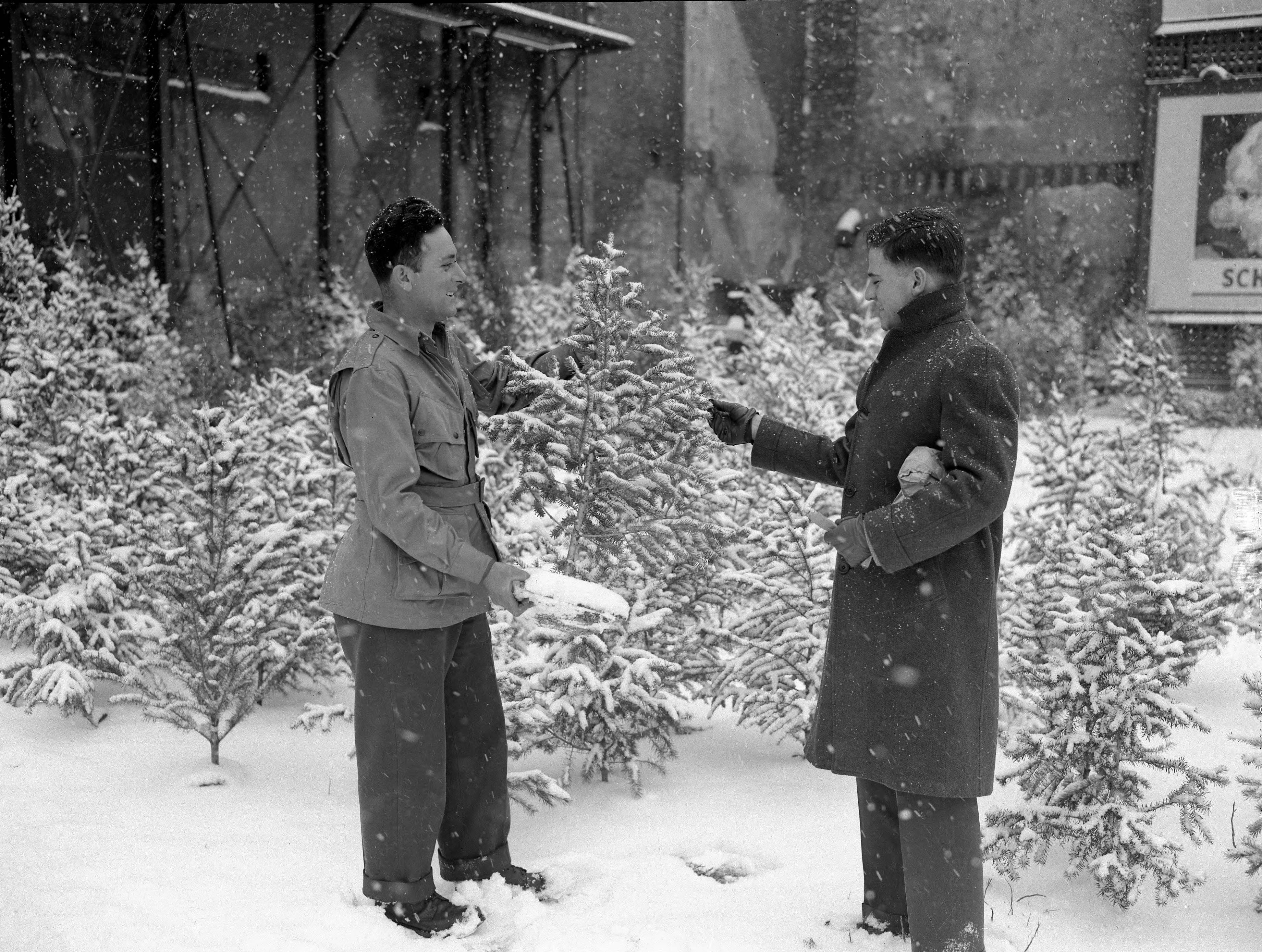 wo men discussing the purchase of a Christmas tree in a snowy (and snowing) setting in 1945.
