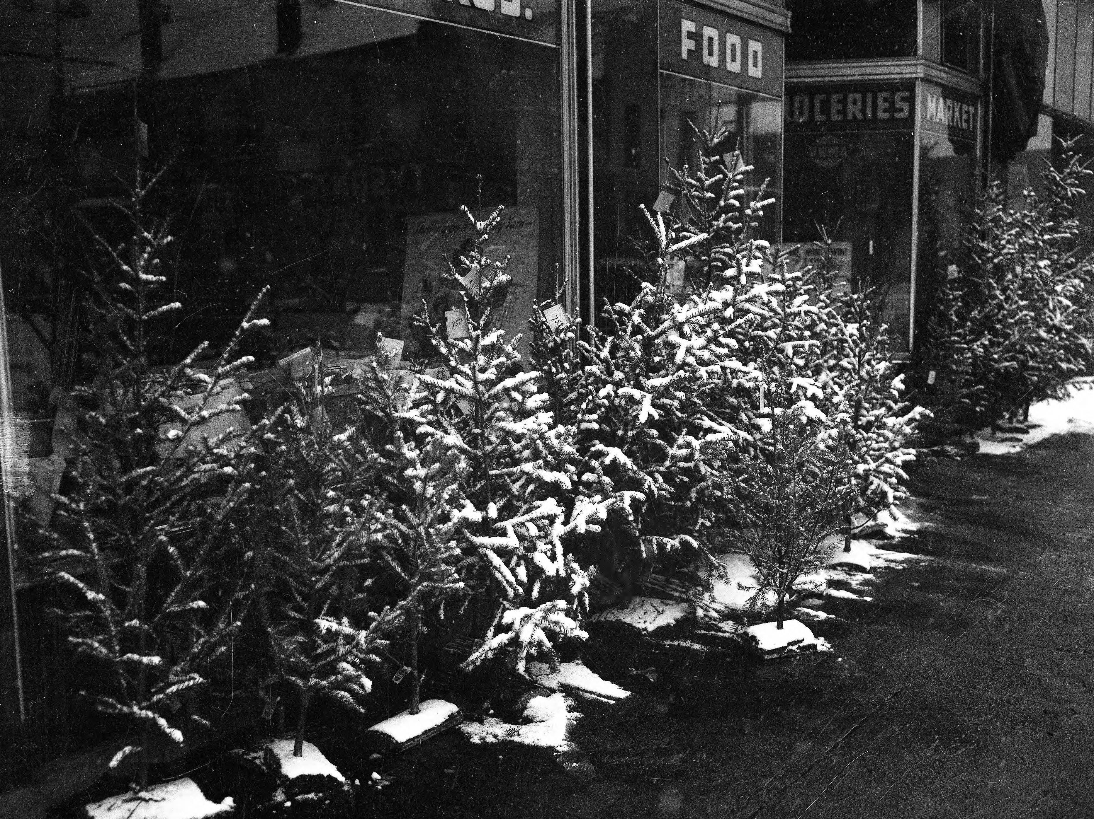 Christmas trees for sale in front of unidentified grocery store--trees cost $.75 in 1940.