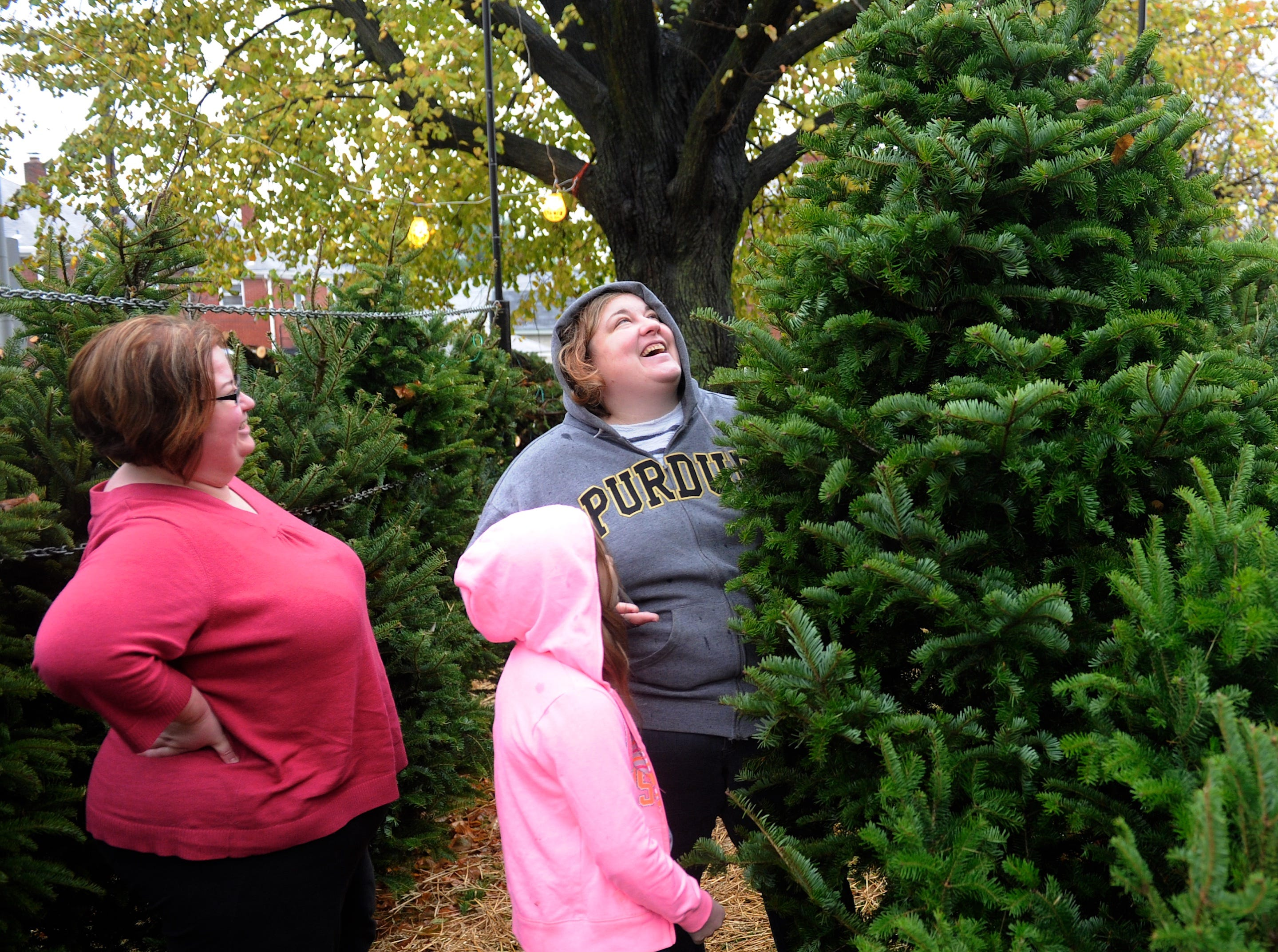 Sisters Molly Welch (left) and Melissa Gormley with god-daughter Olivia Schnautz, 9 years-old, search for their Christmas tree Saturday at Boy Scout Troop 399's tree lot, November 28, 2015.