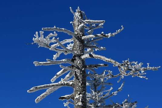 Mountain Snow 19