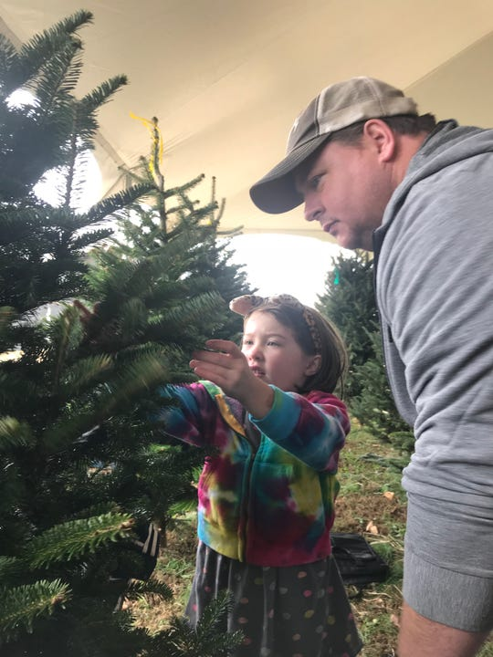 Claire Adams, 6, and her father, Josh, examine a Christmas tree at Bluebird Christmas Tree Farm. While in town from Indiana to visit family, the Adamses shopped for a tree the day after Thanksgiving.