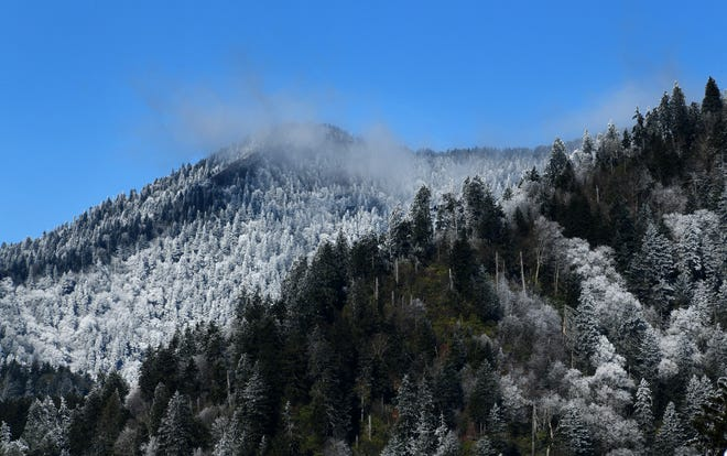 Snow in the Great Smoky Mountain National Park along US441 from Sugarlands Visitor Center to Newfound Gap Wednesday, Nov. 28, 2018.
