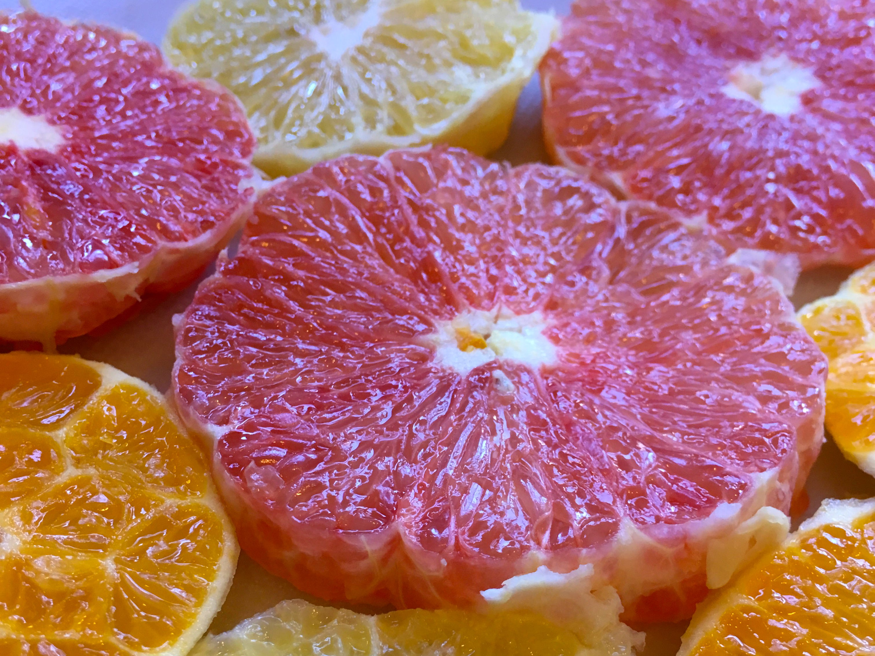 Estero High School student Grace Reese took this photo of colorful citrus.