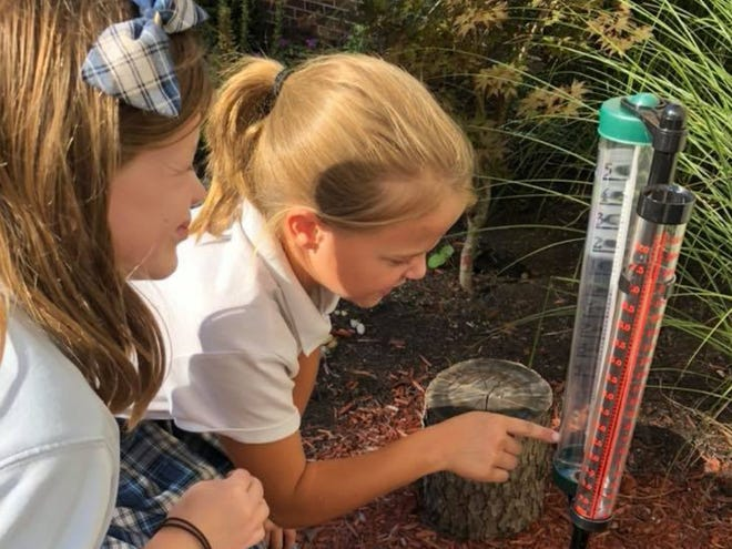 Earlier this year, a $390.95 Robert P. Bell Education Grant allowed fourth-grade teacher Jennifer Jessie to recover an abandoned garden at St. Mary School. Students from preK through middle school have used the garden to learn about the environment.