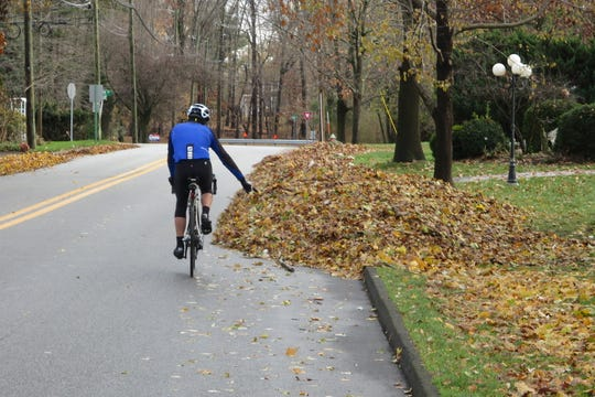 A rider signals to a road hazard, a pile of leaves in the road.