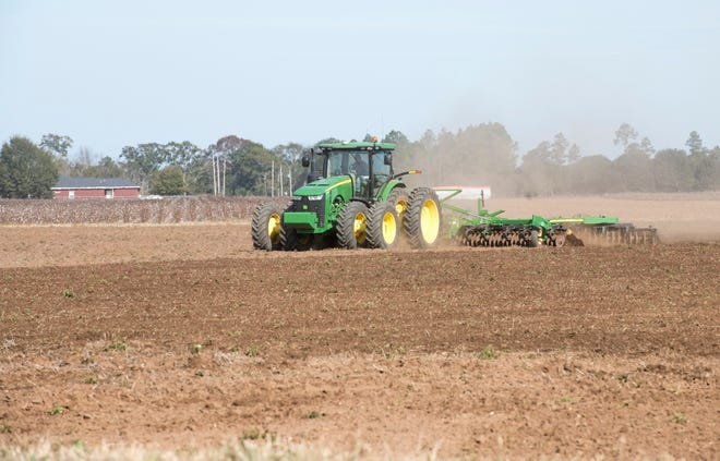 A farmer works the land in Santa Rosa County on Wednesday, November28, 2018.  A special easement will ensure nearly six square miles of forested land in central Santa Rosa County remains free from development in perpetuity.