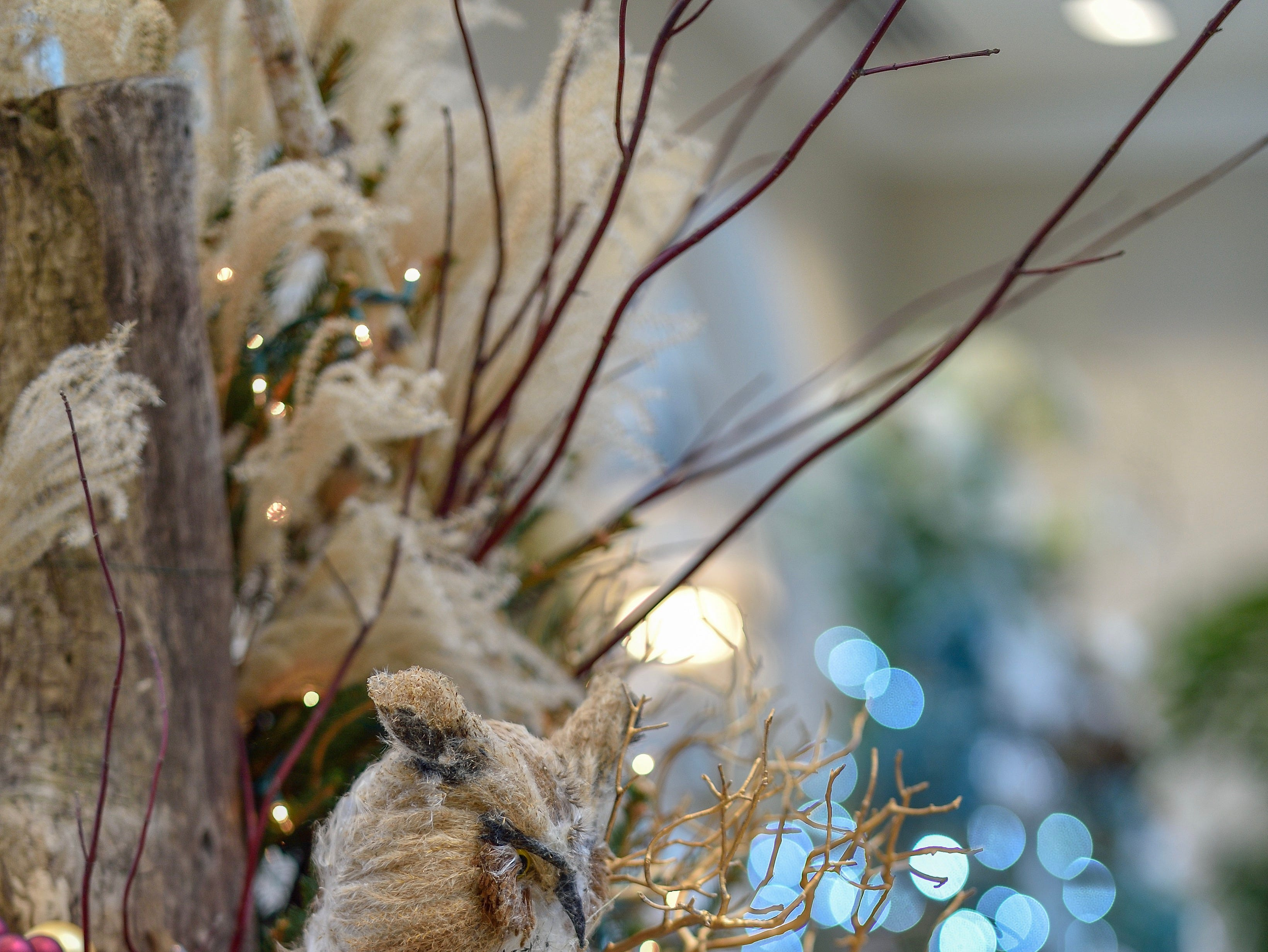 Each evergreen tree at the Christmas Tree Showcase will be decorated by a local floral designer and feature a variety of decorating styles and themes.