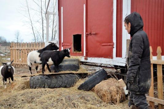 Rons Farm 2