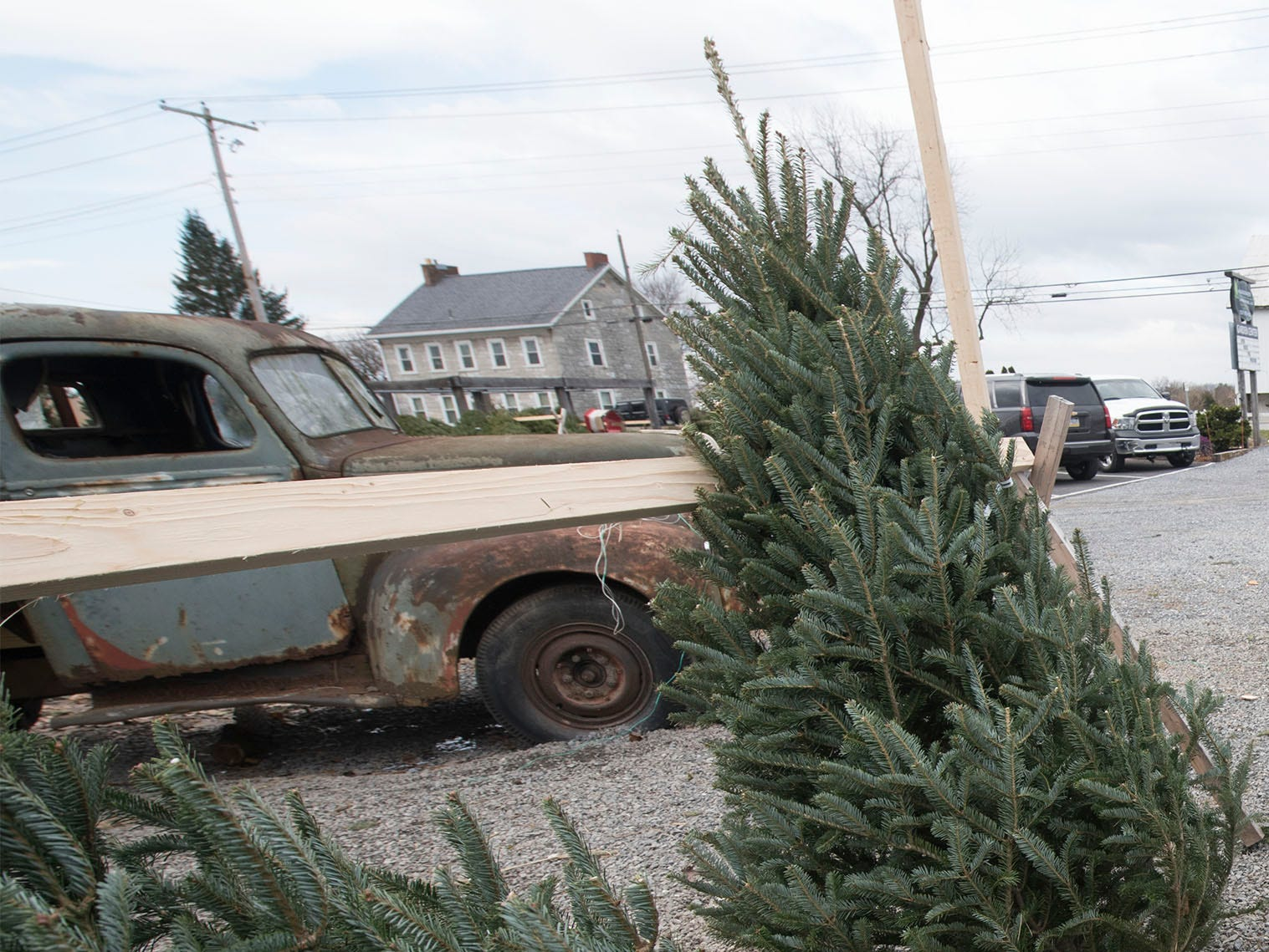 Klenzing Landscaping, LLC, 2922 Molly Pitcher Highway, Chambersburg, sells Christmas trees as seen Wednesday, Nov. 28, 2018. Klenzing's carries a variety of trees during the holiday season.