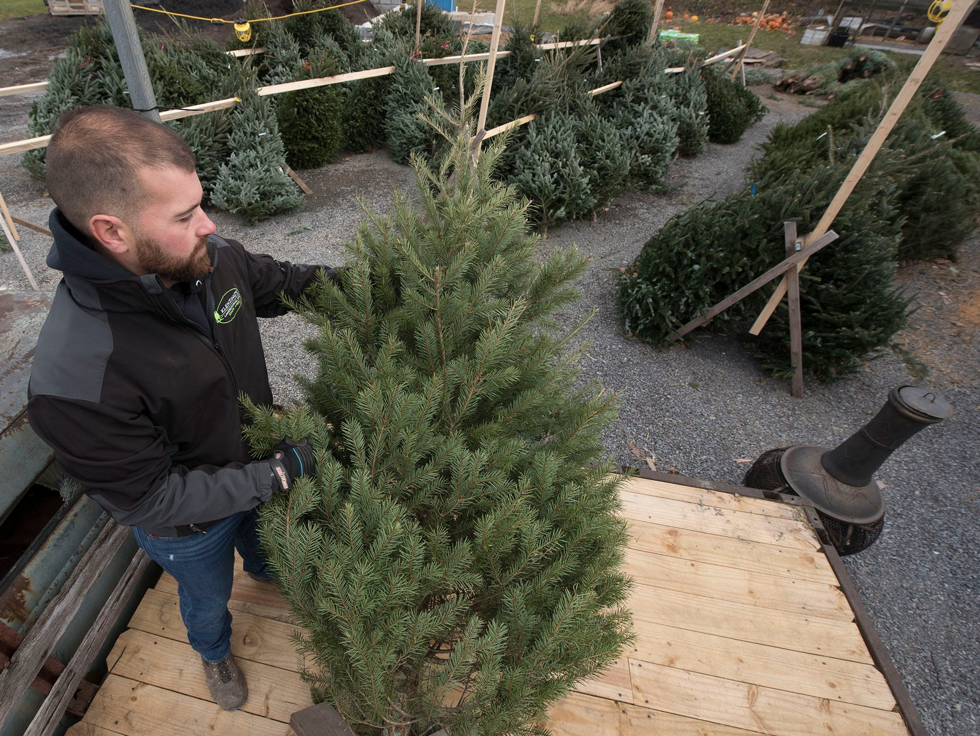 Jordan Klenzing, co-owner Klenzing Landscaping, LLC, 2922 Molly Pitcher Highway, Chambersburg, sells Christmas trees on Wednesday morning Nov. 28, 2018.