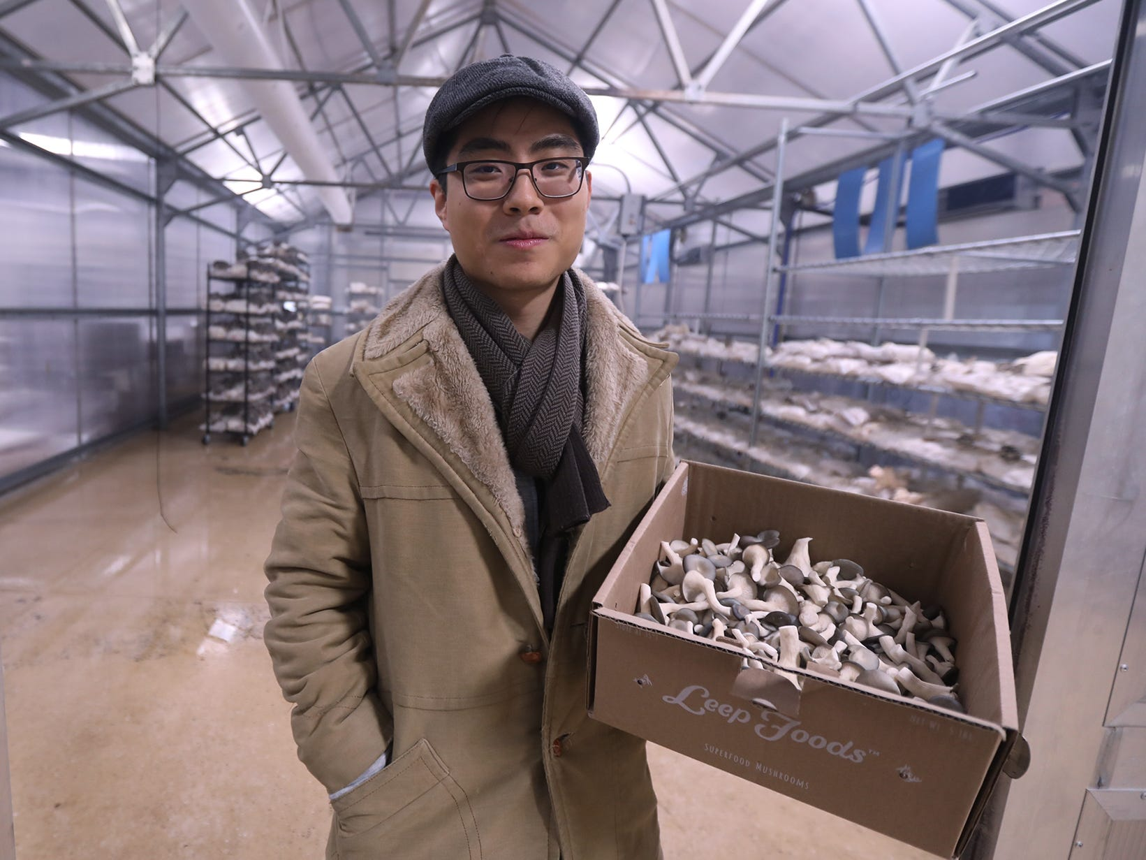 George Zheng of Leep Foods at their facility in Henrietta.  Leep Foods currently sells two types of mushrooms, Blue Oyster and Lion's Mane. Zheng is holding a box of Blue Oyster Mushrooms; behind him are mushrooms almost completely grown.