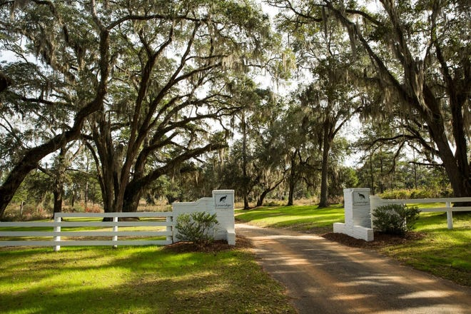 Located in northeast Leon County, the quail plantationstretches across more than 4,560 acres in the heart of the Red Hills plantation belt between Tallahassee and Thomasville, Georgia, and neighbors Sunny Hill, Foshalee, Borderline, Beechwood, Norias, and Ring Oak plantations.