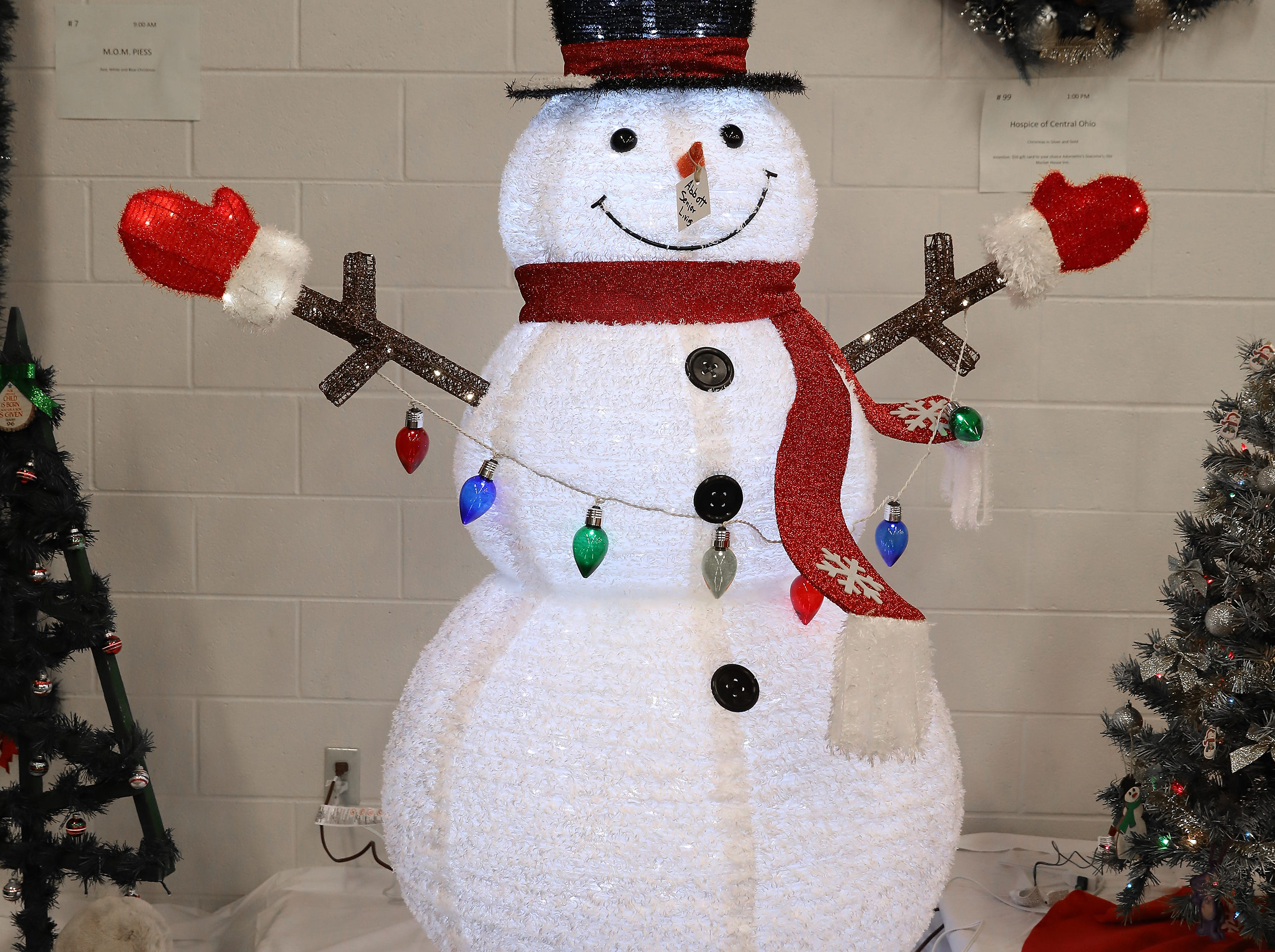 35	10:15 AM	Abbot Senior Living	Other	Winter Snowman	A 6' pop-up snowman with 200 cool white lights, 32 warm white led lights for indoor or outdoor use.		Entry is incentive.