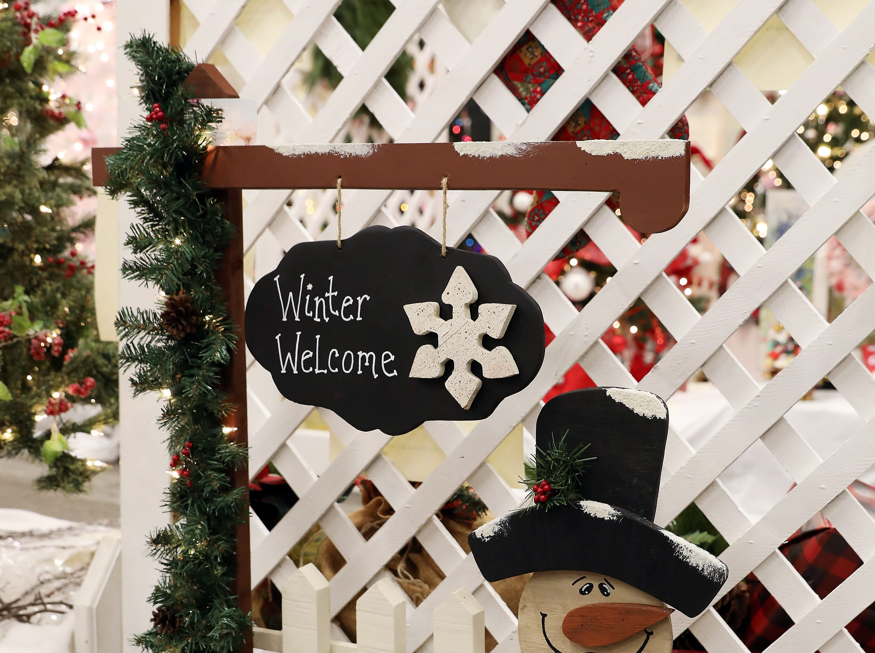 89	12:45 PM	Watch Me Grow Studio	Other	Welcome Winter!	Wooden snowman with decorative illuminated garland and picket fence. 		3D ultrasound, heartbeat session and printed pictures.  Courtesy of Watch Me Grow Studio - celebrating 5 years in business.