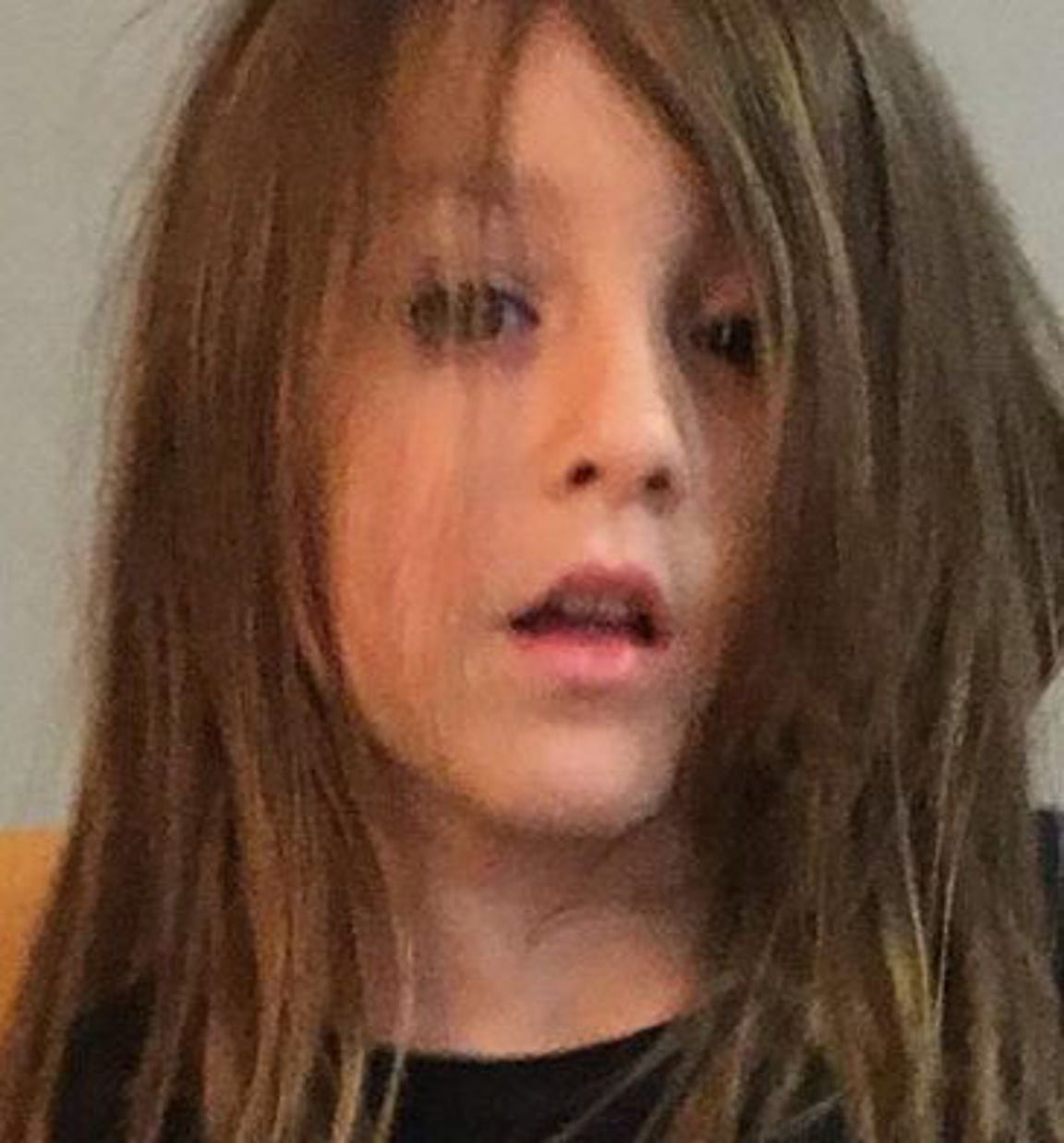 Sophia Caneiro was found dead with her entire family Nov. 20.