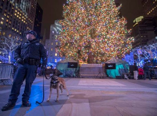 A police officer with a bomb sniffing dog stands next to the Rockefeller Center Christmas tree after the 86th annual Rockefeller Center Christmas tree lighting ceremony, Wednesday, Nov. 28, 2018, in New York. (AP Photo/Mary Altaffer)