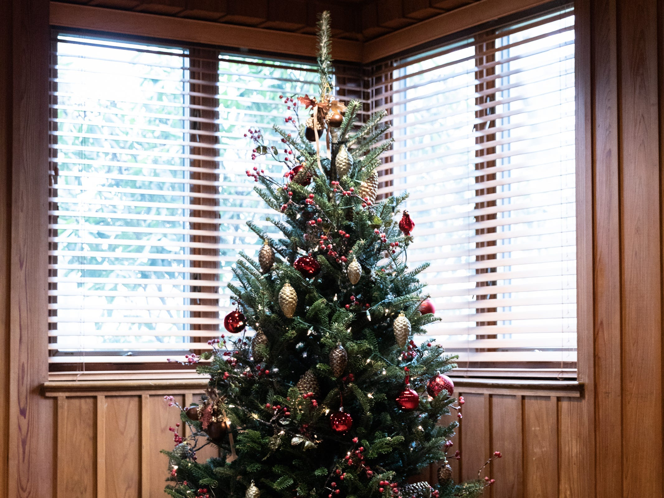 A Christmas tree in the den of the Governor's Western Residence on Patton Mountain Road in Asheville.