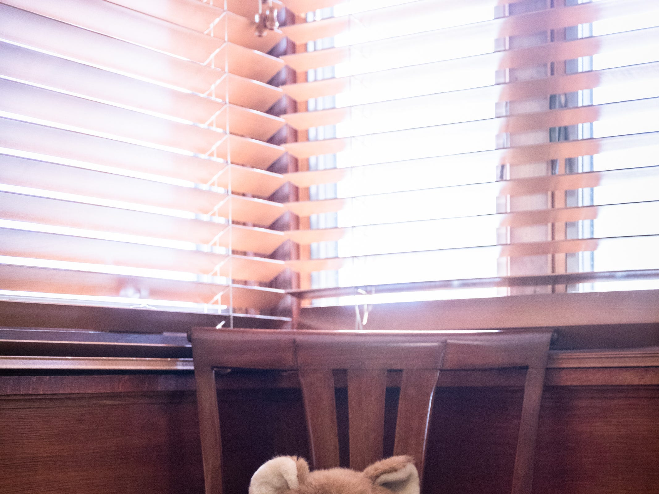 A festive teddy bear in the guest room of the Governor's Western Residence on Patton Mountain Road in Asheville.