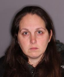 Stephanie Shulgay grand larceny
