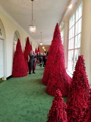 The red berry trees Cincinnati area florist Vickie Wenstrup helped to decorate for the White House.