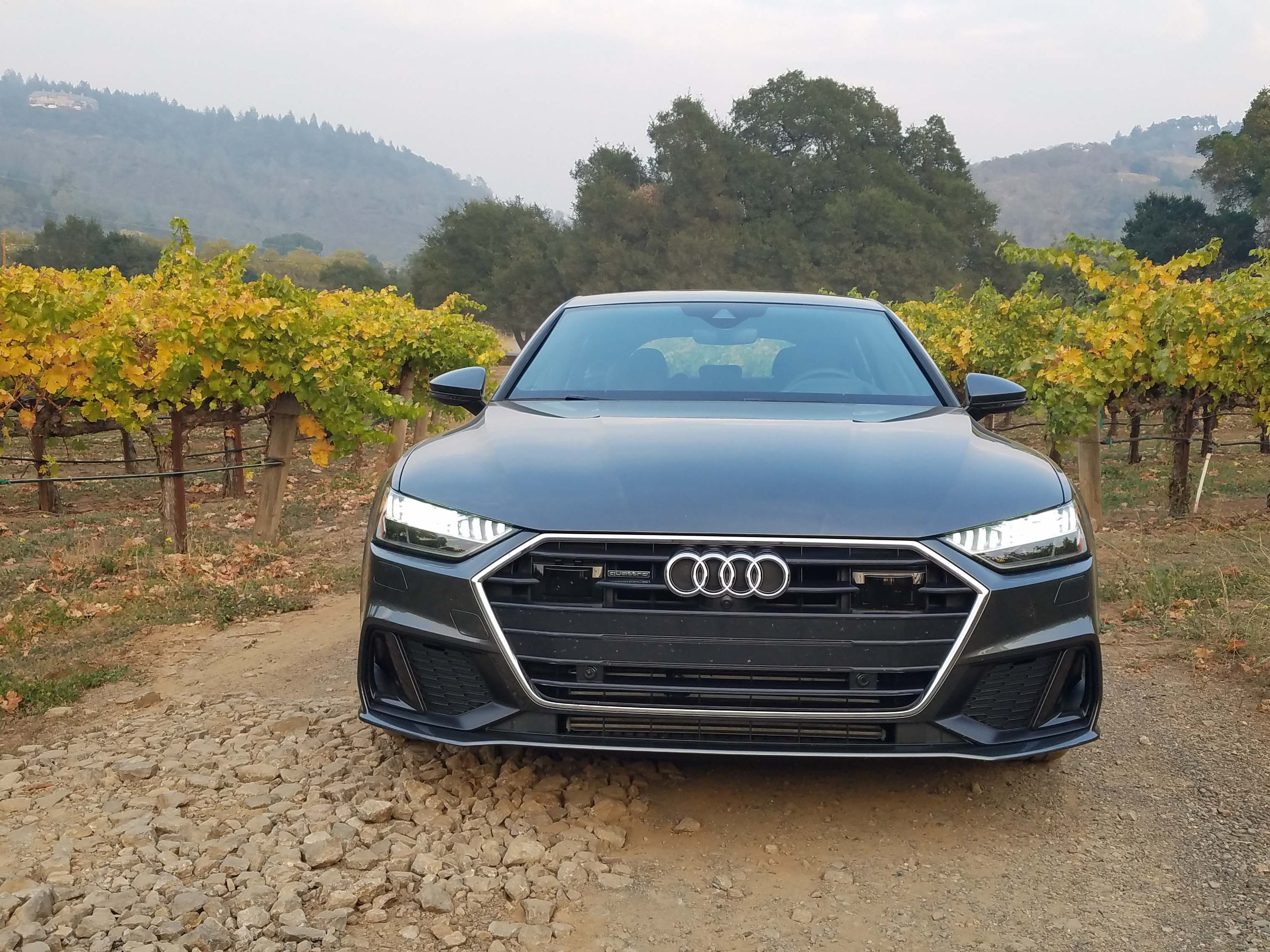 The grille of the 2019 Audi A7 is wider and more integrated with the headlights. The sculpture is interrupted by the twin nostrils of a laser sensor, left, (and radar sensor in the upper grille.