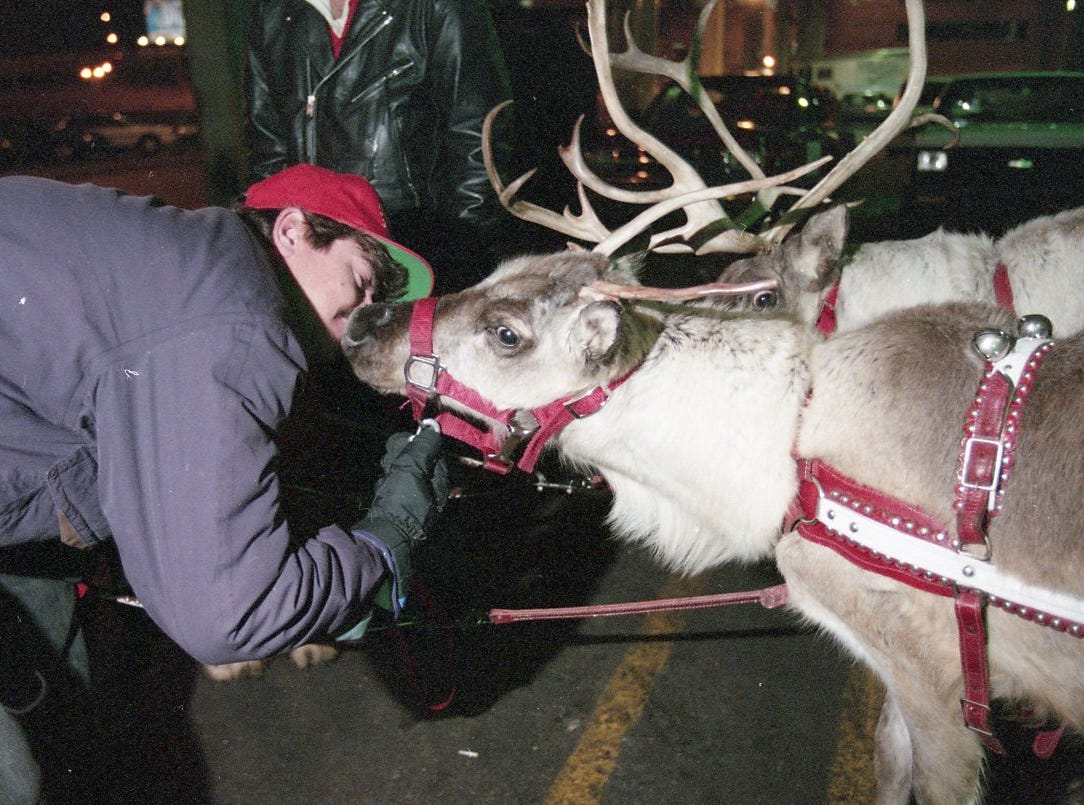 Mike Carpenter, a reindeer handler from Huntsville, Ala., gives Baby Prancer a kiss prior to Knoxville's Christmas parade in December 1995. A team of five reindeer from Reindeer, Inc., out of Huntsville, Ala., pulled Santa Claus in the parade. The sleigh, built by Bobby Baldwin and the owner of the company, is made of birch plywood.