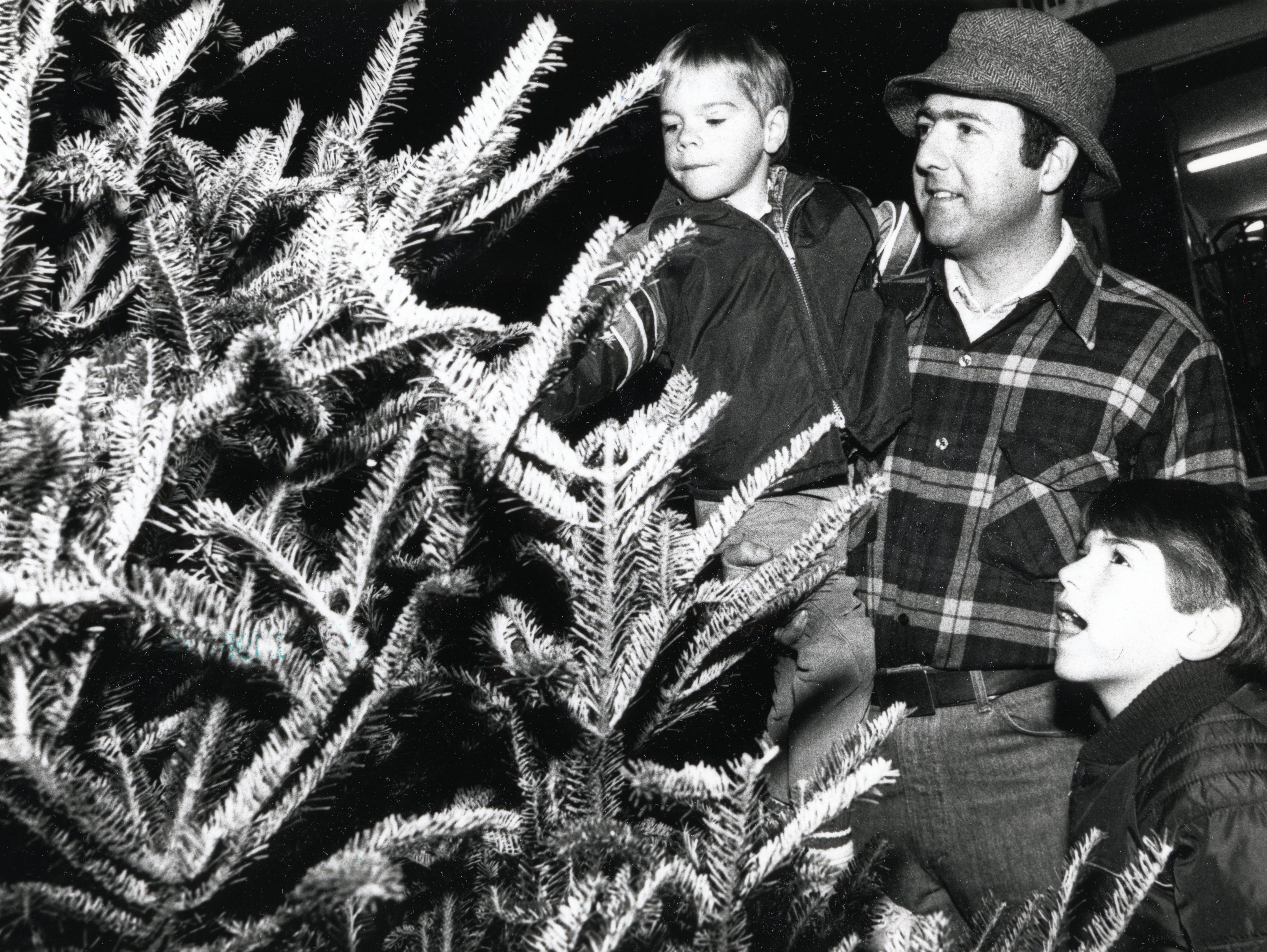 K.M Spouse, David, 5, and Brian, 7, make their tree selection in December 1981 in Knoxville.